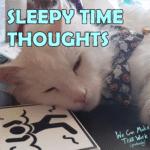 Sleepy Time Thoughts
