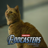 Captain Marvel - Goose Cat